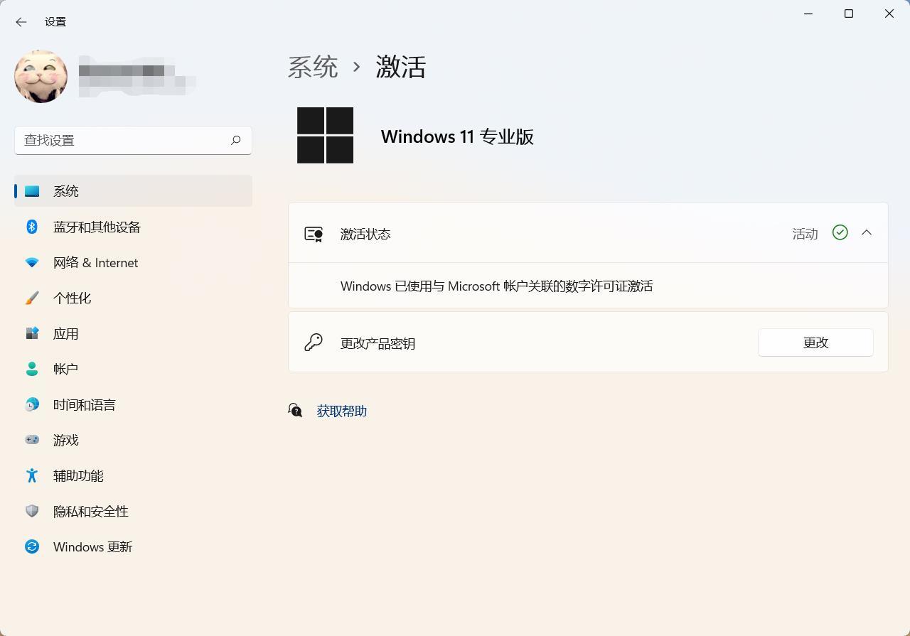 Windows11激活专业版